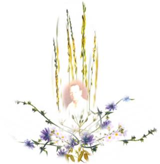fleur-bach-carre-01